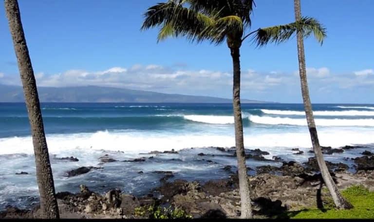Maui Real Estate 1